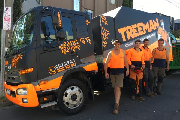 Treeman Tree Removal Melbourne